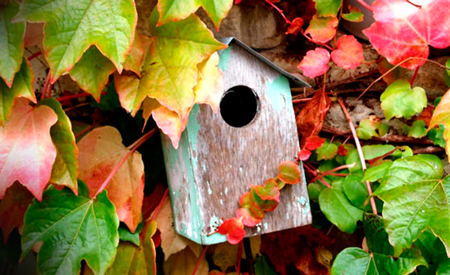 bird-house-casona-suesa-santander-cantabria-boutique-hotel-hotels-spain-charming-holidays-vacation-holiday-stay-4